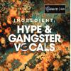 【Hype风格人声采样】Catalyst Samples Ingredient Hype and Gangster Vocals WAV