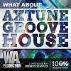 【Groove House风格采样+扩展音色+工程模板】W A Production Axtune Groove House WAV MIDI Spire-DECiBEL