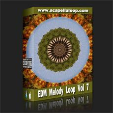 旋律素材/EDM Melody Loop Vol 7